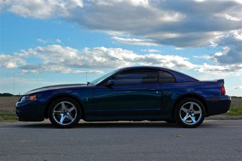 2004 Ford Mustang Svt Cobra Other Pictures Cargurus