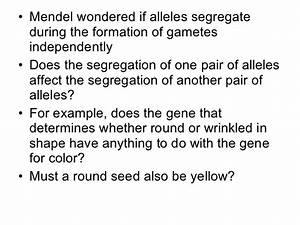 Biology - Chp 11 - Introduction To Genetics