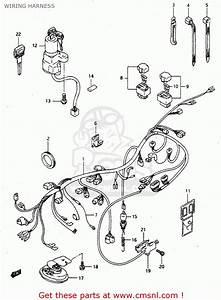 Suzuki Rgv250 1992  N   E02 E04 E21 E22 E24 E34  Wiring Harness