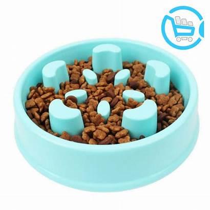Dog Bowl Maze Puzzle Slow Eating Feeder