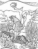 Coloring Tropical Fish Sheets Youngandtae Adult Aquarium Mermaid Ocean Printable sketch template