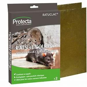 Produit Pour Tuer Les Souris : pi ge englu e anti rats souris plaque ecologique maison boulangerie ~ Melissatoandfro.com Idées de Décoration