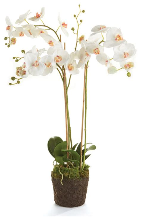 phalaenopsis 31 quot orchid drop in white artificial flower