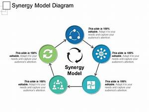 Synergy Model Diagram Ppt Sample Presentations