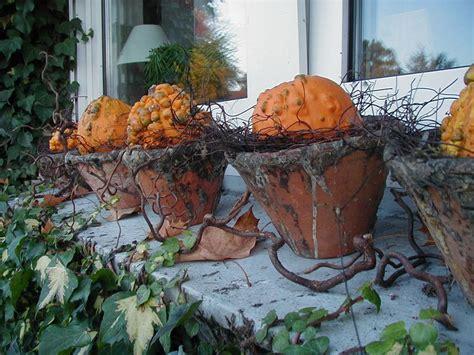 Herbst Und Garten by Es Riecht Nach Herbst 2 Wohnen Und Garten Foto Babsi