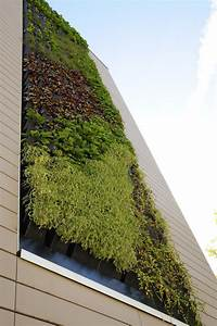 Mur Vegetal Exterieur : mur v g tal ext rieur orl ans j richard paysage ~ Melissatoandfro.com Idées de Décoration