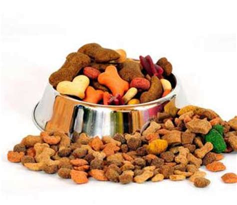 dispelling  myth  high protein dog food
