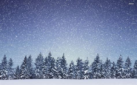 Snowing Gallery
