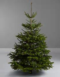 ideas about fake christmas trees that look real cheap christmas decorations