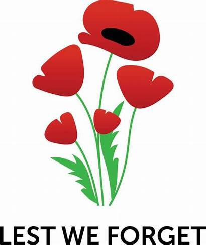 Remembrance Poppy Vector Clip Royalty Poster Illustrations