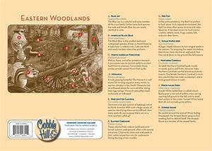 Eastern Woodlands Tray Puzzle Outset Media Games
