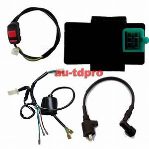 Wiring Loom Harness Kill Switch Ignition Coil Cdi For 50cc