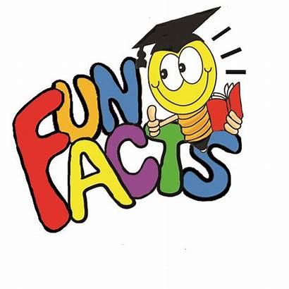 Facts Fun Dummies Crash Engineering Brief History