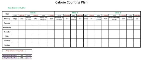 food calorie spreadsheet calorie counter worksheet worksheets for school getadating