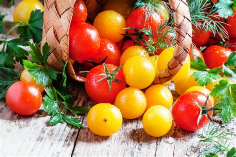 comment cuisiner les tomates vertes bien choisir cuisiner et conserver ses tomates coeur de