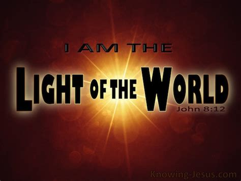 jesus is the light 8 12 verse of the day