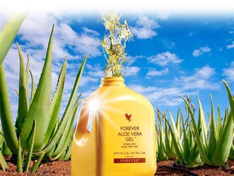 Ingredients Inside Forever Aloe Vera Gel Bottle