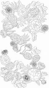 Coloring Adult Printable Artichoke Lovers Paradise Pages Edible Thekitchn Sheet Collage Printables Jessie Kanelos Weiner Credit Storage Artichokes Books sketch template