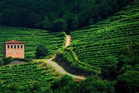 chambre des commerces bayonne le gîte vertes montagnes à st jean pied de port au pays basque