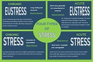 Types of stress | Catalyst
