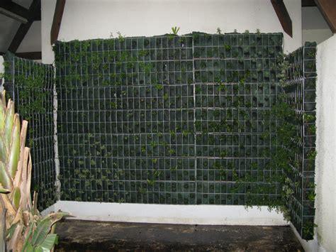 photos mur v 233 g 233 tal mur mure vegetal