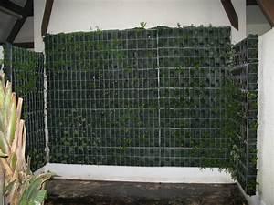Mur Vegetal Exterieur : construire mur vegetal exterieur 1 photos mur ~ Melissatoandfro.com Idées de Décoration