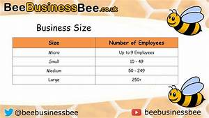 Business Size And Scale Beebusinessbee
