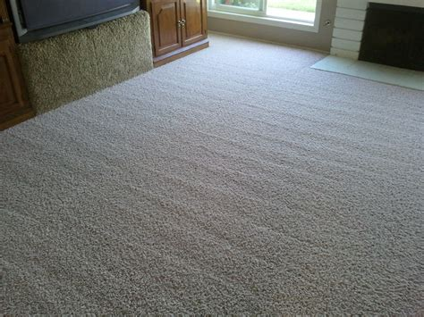 Best Types Of Carpet For High Traffic Areas  Fox Lake, Il