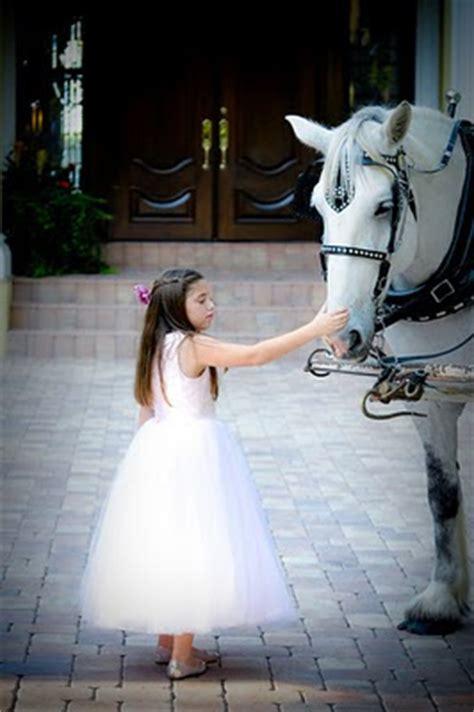 beautiful    heart local celebrity wedding
