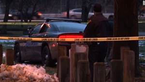 Cleveland:Police shooting death of boy, 12, his fault ...