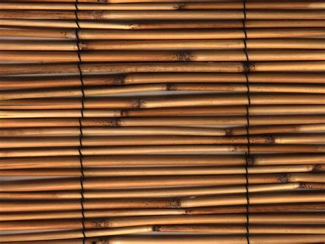 Outdoor Bamboo Blinds by Bamboo Shades Lowes Outdoor Sofa Cope