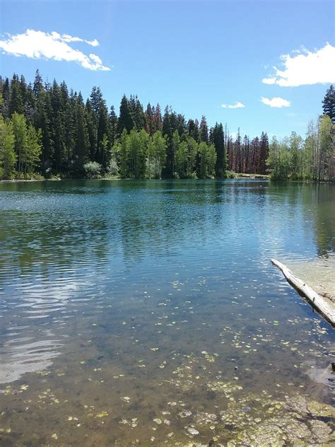 photo gallery payson lakes  utah department