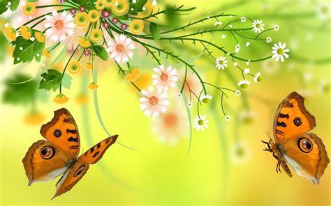 butterfly flower art wallpaper hd wallpaperscom