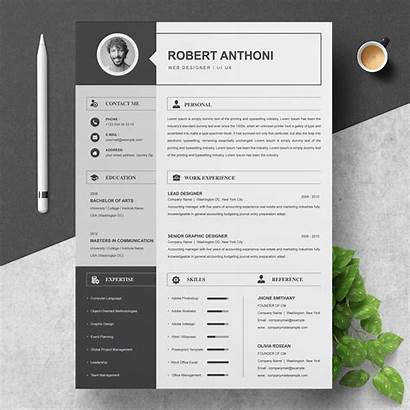 Cv Resume Template Pages Templates Professional Word