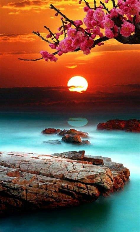 exotischer strand sonnenuntergang wunderschoener