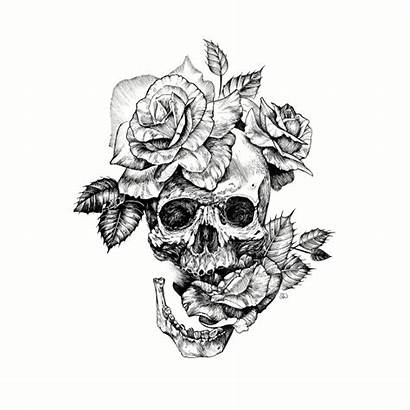 Skull Drawing Roses Ink Tattoo Tank Teepublic