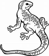Lizard Coloring Pages Monitor Monster Gila Drawing Printable Spiderman Drawings Iguana Template Getcolorings Getdrawings Sketch Chuckwalla Monsters Colorings sketch template