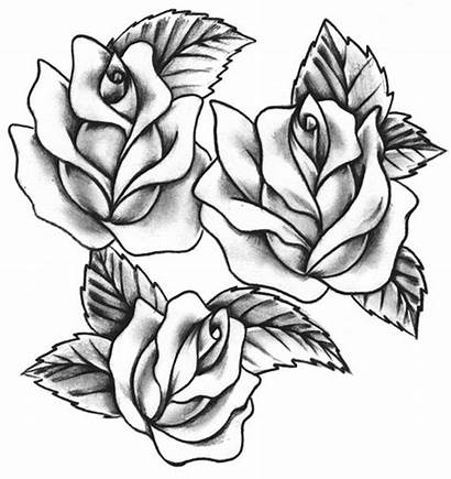 Tattoo Rose Roses Tattoos Designs Meaning