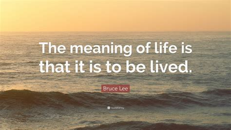 bruce lee quote  meaning  life
