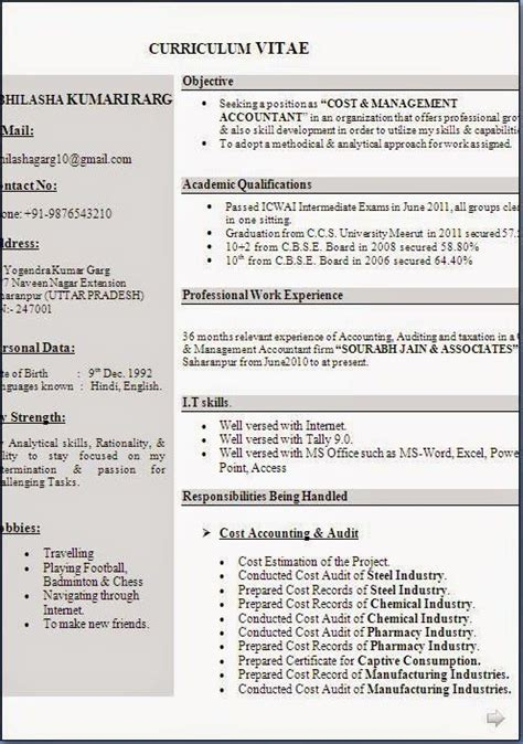 Professional Cv Format Word Document by Exles Of Professional Cv Sle Template Exle
