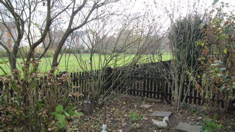 Wohnung Mit Garten Bonn by Wohnungen Bonn Wohnungen Angebote In Bonn