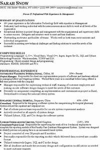 resume knowledge and skills it consultant resume example