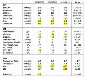 Liver Function Test  U2013 Peter Tan  U2013 The Digital Awakening