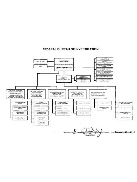 fbi organizational chart   templates   word
