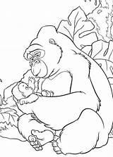 Coloring Gorilla Popular Coloringhome sketch template