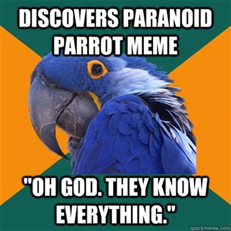 Paranoid Parrot Memes - discovers paranoid parrot meme quot oh god they know everything quot paranoid parrot quickmeme