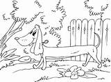Sausage Dog Coloring Pages sketch template