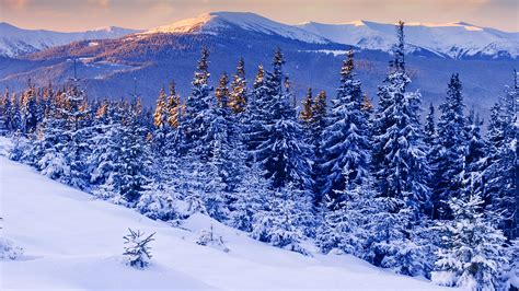 Scenic Winter Hd Background Wallpapers 5769 Amazing