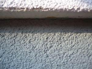 Risse Zwischen Wand Und Decke Reparieren : vws riss zwischen sockel und wand bauforum auf ~ Lizthompson.info Haus und Dekorationen