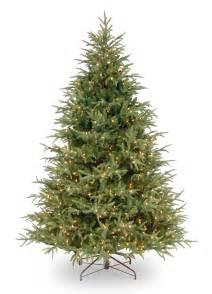 Christmas Tree 7ft Uk by 7ft Pre Lit Frasier Grande Fir Feel Real Artificial